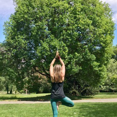 arbre parc