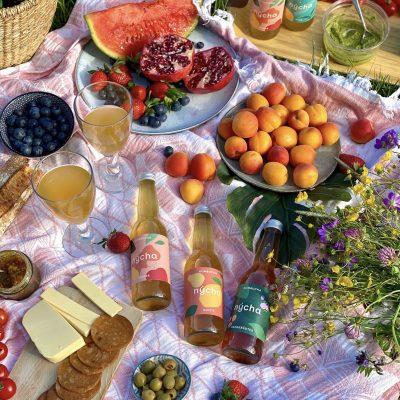 Vegans of Zürich picnic2 nÿcha bottles